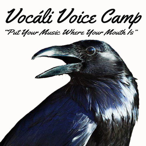 vocali-voice-camp-logo