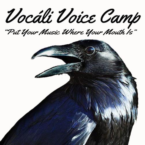 vocali-voice-camp-logo